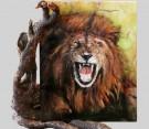 Lion-termine--JPEG